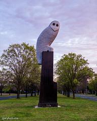 The Owl Statue on Sunday morning (garydlum) Tags: autoimport owlstatue publicart canberra australiancapitalterritory australia