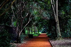 Jardín Botánico (Mands Cabral) Tags: jardinbotanico buenosaires nature trees canon rebelt6 ba argentina