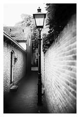 Gaslight (leo.roos) Tags: veere walcheren zeeland lamppost lantaarnpaal vuilstraat alley steeg street wall noiretblanc bw lamp muur steen solaag manu a7 voigtlandernoktonclassicsc35mmf14vm cosina cv mmount nokton3514 voigtlander3514 darosa leoroos