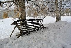 01.10.2019 (KvikneFoto) Tags: nikon1j2 snø snow