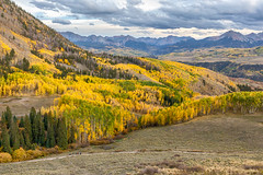Mountainside Aspens (Kirk Lougheed) Tags: colorado lastdollarroad populustremuloides sanjuanmountains sanmiguelcounty usa unitedstates aspen autumn cloud fall landscape mountain mountainside outdoor sky tree