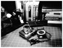 The Work Table (Larry Buechler) Tags: kodak crowngraphic papernegative hc110 largeformat graflex 4x5