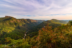 linville gorge (McMannis Photographic) Tags: wisemansview landscape landscapeandnature pisgahnationalforest northcarolina travel photography destination sunset mountain linvillegorge carolinas explore nc southeast tourism worldtrekker