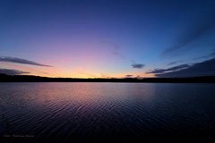 Morning in pastel (Patricia Buddelflink) Tags: sunrise lake nature landscape