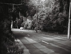 The Crescent road (Matthew Paul Argall) Tags: jcpenneyelectronicstrobepocketcamera fixedfocus 110 110film subminiaturefilm lomographyfilm 100isofilm blackandwhite blackandwhitefilm road street