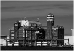 CTVrede (LeonardoDaQuirm) Tags: noordzee noordzeekanaal amsterdam architecture building northsea nordsee ijmuiden zaandam zaanstad ctvrede container terminal containerterminal canal kanal kanaal
