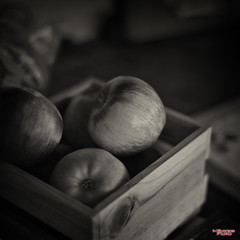 Forbidden Fruit (MBates Foto) Tags: apples availablelight bokeh blackandwhite daylight existinglight fruit inspiration inspirational inspire monochrome nikkorlens nikon nikond810 nikonfx outdoors stilllife colbert washington unitedstates