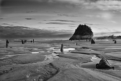 _IMG1060-Edit-1 (Mike Hiran Photography) Tags: nehalem oregon pacific ocean haystack ghostforest cascadia subduction