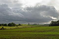 Automne à Ellemelle (Aywaille) (Nicopope) Tags: automne ellemelle ova nature paysage nuageux nikon d700 1635mm nuages landscape landschaft autumn herbst condroz
