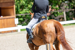 IMG_7591 (dreiwn) Tags: dressage dressurprüfung dressurreiten dressurpferd dressyr ridingarena reitturnier reiten reitverein reitsport ridingclub equestrian horse horseback horseriding horseshow pferdesport pferd pony pferde dressur dressuur canonef100400mmf4556lisiiusm