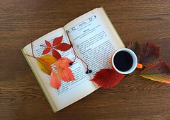 coffee and autumn mood (majka44) Tags: drink coffe lifestyle atmosphere macro 2019 stilllife book leaves foliage mood colors light autumn nice