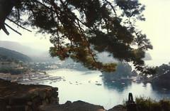 parga97 (Regine G.) Tags: parga branches gulf panorama summer vacations landscape naturalbeauty