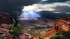 Cliffs (shchukin) Tags: moab utah unitedstates canyonlands canyonlandsnationalpark cliff sandstone landscape light sigma shchukin nikond5200