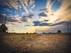 Sunset (banagher_links) Tags: olympus omd em10 mark iii mft micro 43 russia zaraysk landscape country
