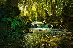 Licht (KaAuenwasser) Tags: brühlbach bach wasser natur gewässer licht schatten sonne felsen baum bäume sträucher wurzeln stufen