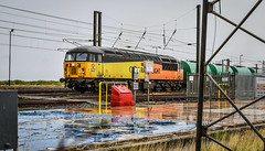 Beware of trains on the down loop (robmcrorie) Tags: 56302 colas class 56 grangemouth prestwick falkland yard ayr down loop warning lights rain reflection 1z10