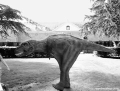 Photo of Jurassic Tredegar Park