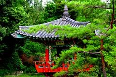 Gazebo Tsurumi park (zona_jail) Tags: orange tree landscape korea gazebo international osaka tsurumipark kansai 鶴見緑地園 日本 関西 大阪市 canoneos7d 公園