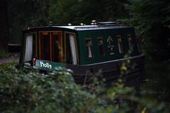 Basingstoke Canal Aldershot-Farnborough 29 September 2019 029 (paul_appleyard) Tags: basingstoke canal aldershot farnborough holly narrowboat galleon marine hampshire hants september 2019