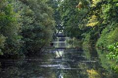 Basingstoke Canal Aldershot-Farnborough 29 September 2019 009 (paul_appleyard) Tags: basingstoke canal aldershot farnborough claycart bridge hampshire hants september 2019 reflection reflected