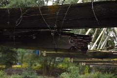 Basingstoke Canal Aldershot-Farnborough 29 September 2019 014 (paul_appleyard) Tags: basingstoke canal aldershot farnborough inglis bridge hampshire hants september 2019 barbed wire crumbling broken