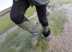 Aigle in Action (essex_mud_explorer) Tags: aiglestart aigle ridingboots boots rubberboots rubberridingboots mud mudflats estuary creek tidalmud saltmarsh saltmarshes marshes salt sinking squelching walkinginmud walkingthroughmud splodge splodging squelch