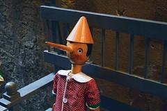 Pinocchio (unciclamino) Tags: pinocchio italy italia umbria orvieto bench