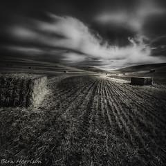 Palouse Harvest 1 (bern.harrison) Tags: colfax washington palouse harvest wheat blackwhite clouds agriculture rural landscape