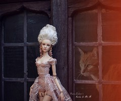 Her sun (pure_embers) Tags: pure laura embers porcelain bjd doll dolls england uk girl sensational karla pureembers photography photo ball joint portrait fine art beauty rococo ghostly white ethereal immortal classique cat kitty loss