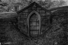 Gated (* Gemini-6 * (on&off)) Tags: mausoleum crypt cemetery grave blackandwhite monochrome grunge vintage door dead stone trees bokeh
