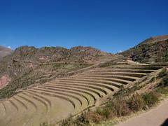 P1156425 (carlo) Tags: peru perù panasonic lumix g9 dmcg9 m43 micro43 sudamerica southamerica vallesagrado vallesacra inca pisac