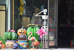 The Plaza District in OKC (Andrew Penney Photography) Tags: plazadistrict buildings sidewalk okc 405 places stores shops plazawalls beer bars streets view shop plants skull skeleton smoking dayofthedead pumpkin joint week doobie blunt