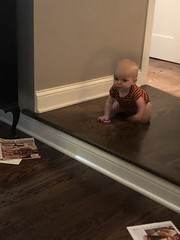 """Luc Crawls at Grandma and Grandpa's • <a style=""""font-size:0.8em;"""" href=""""http://www.flickr.com/photos/109120354@N07/48817051858/"""" target=""""_blank"""">View on Flickr</a>"""