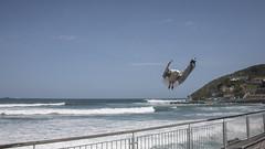 Seagull selfie (Ian@NZFlickr) Tags: stclair seagull sunday sea surf surfer saltwaterpool sunshine spray suspended dunedin nz sky spontaneous