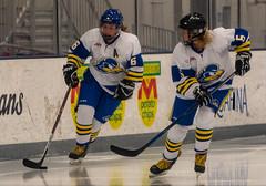 DSC_0435 (carl.r.mccombs) Tags: 09282019 acha icehockey ohiostate ud womens