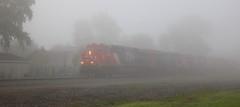 CN 3830, Adams, Neenah, 20 Sept 19 (kkaf) Tags: neenah es44ac adams fog a491