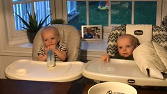 """Luc and Sam in Their High Chairs • <a style=""""font-size:0.8em;"""" href=""""http://www.flickr.com/photos/109120354@N07/48817562532/"""" target=""""_blank"""">View on Flickr</a>"""