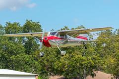 N1797D 1951 Cessna 170A (SamCom) Tags: 0tx1 pecanplantationairport pecanplantationflyin
