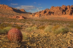 Valley of Fire 2868 A (jim.choate59) Tags: blue red valleyoffire lasvegas nevada sandstone cactus prospecttrail desert goldenhour magichour d610 jchoate on1pics