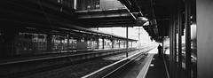 新函館北斗駅 (Ryan Pham.) Tags: japan hokkaido film analog hasselblad xpan jch streetpan japancamerahunter blackandwhite