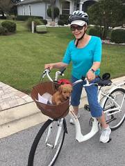 Noel's Annie loved her first bike ride!