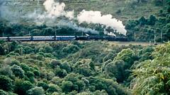 118 Double headed Steam train (Awesome Image Maker NZ) Tags: canonslidebestof flickr ja1211 ja1234 raurimuspiral slides doubleheaded steamexcursion steamtrain
