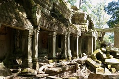 Partial Restoration (Anne Marie Clarke) Tags: monastery ruins taprohm siemreap angkor cambodia jungle trees rubble buddhist temple khmer