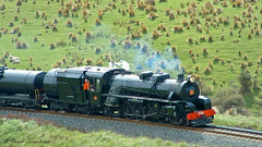 004 15Oct04 near Tar Barrel Tunnel 1 (Awesome Image Maker NZ) Tags: 2004 flickr jb1236 marlborough tarbarrelhill steamexcursion steamtrain