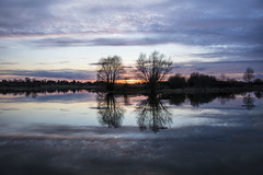 Sunset Silhouette (CraDorPhoto) Tags: canon5dsr landscape waterscape lake water reflection clouds sky trees nature outdoors outside uk cambridgeshire