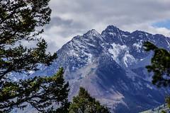 DSC01544-2 (photorandy2011) Tags: grandtetons wyoming mountains