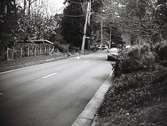 The Crescent road (photo 2) (Matthew Paul Argall) Tags: jcpenneyelectronicstrobepocketcamera fixedfocus 110 110film subminiaturefilm lomographyfilm road street blackandwhite blackandwhitefilm