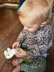 Eliza and bunny (quinn.anya) Tags: eliza toddler rabbit bunny grichels