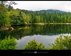 Rice Lake reflections, BC, Canada (Ann Badjura Photography) Tags: vancouver britishcolumbia canada westcoast ricelake northvancouver northshore lake scenery reflections calm water trees fall autumn 604now miss604 24hrvancouver vancitybuzz georgiastraight colourfulvancouver ctvphotos photonewsgallery canadianbeauty iamcanadian insidevancouver marculescueugendreamsoflightportal annbadjura photography explorebc ourcanada