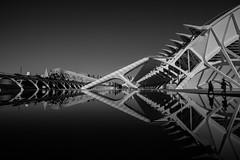Ciudad de las Artes y de las Ciencias (rainerralph) Tags: schwarzweiss valencia spain ciudaddelasartesydelasciencias fe281635gm santiagocalatravas spiegelung espania sony mirroring spanien a7r3 blackwhite